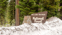 Wallowa Whitman National Forest Entry Sign Boundary Oregon State USA