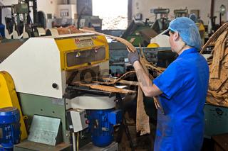Verarbeitung der Rinde der Korkeiche zu Korkscheiben, Korkfabrik Novacortiça. Algarve, Portugal