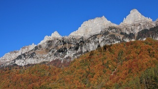 Multi colored autumn forest and mountain peaks of the Churfirsten Range. View from Walenstadt, Switzerland.