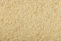 White Thai Jasmine rice close up background