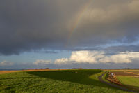 Regenbogen am Deich