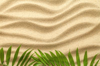 Summer Background with Green Palm Leaves