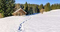 Footprints in snow leading to old wooden cabin and forest. Allgau, Bavaria, Germany, Alps.