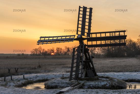 Sunrise Paaltsjasker in Wieden-Weerribben