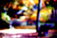 Park im Herbst abstrakt