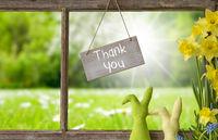 Window, Green Meadow, Thank You