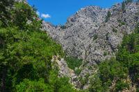 the canyon yolu