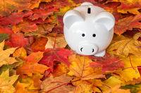 Piggy bank with autumn foliage
