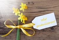 Sunny Spring Narcissus, Label, Wir Gratulieren Means Congratulations