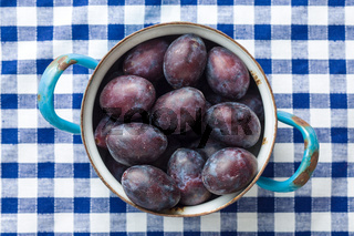 Fresh plums from garden in old pot.