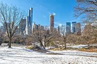 Winter im Central Park New York