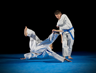 Boys martial arts fighters isolated