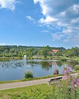 am Kranichsee in Hahnenklee-Bockswiese im Kurpark,Harz,Niedersachsen,Deutschland