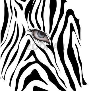 Human eye among black lines.Vector illustration