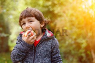Kleiner Junge Kind Apfel essen Textfreiraum draußen Herbst Natur