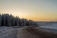 dirty road through a snowy forest