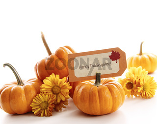 Closeup of mini pumpkins with place card