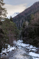 Winter landscape of a mountain river with snow along the coast. River in the Pine Forest in the Caucasus Russia