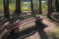 Ruhebank im Wald