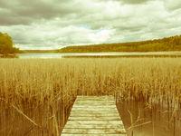 Hölzerner Steg führt in einen See mit Schilfgürtel