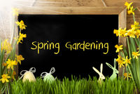 Sunny Narcissus, Easter Egg, Bunny, Text Spring Gardening