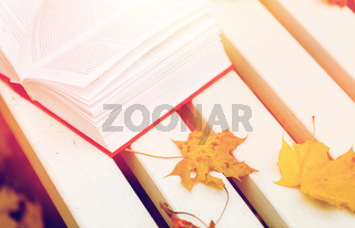 open book and autumn leaves on park bench