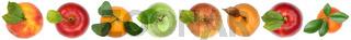Früchte von oben Apfel Orange Freisteller freigestellt isoliert in einer Reihe