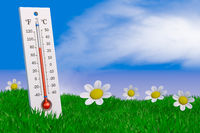 Thermometer and flowers