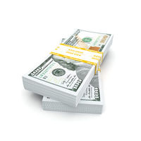 3d rendering pair of packs of US dollars