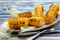 Cobs of sweet corn roasted on the grill.