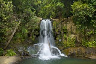 Waiau Falls, Wasser faellt in mehreren kleinen Kaskaden die Waiau Falls hinunter. Sie befinden sich mitten in ueppigem temperiertem Regenwaldes entlang der 309 Road, Coromandel Halbinsel, Nordinsel, Neuseeland Waiau Falls, water cascading down Waiau Falls
