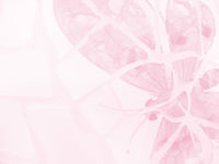 Pink Butterfly Stationary