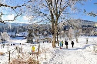 Bewegung und Freude im Winter auf der Herrenwies im Schwarzwald.jpg