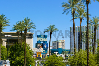 Palms and casino in Las Vegas