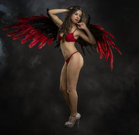 brunette girl in underwear with huge black and red bird wings