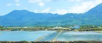 Landscape with shrimp feeding farms in Vietnam