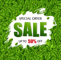Sale Banner With Green Leaves Background