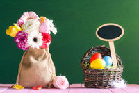 Flowers and Easter eggs with a banner