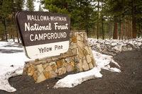 Wallowa Whitman National Forest Yellow Pine Campground Sign Oregon USA