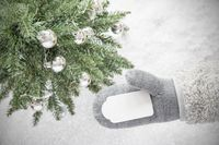 Green Christmas Tree, Glove, Copy Space, Snowflakes