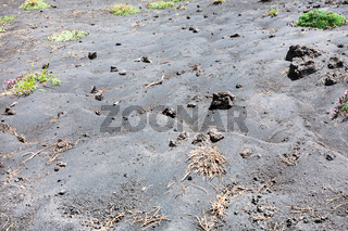 black volcanic soil on slope of Etna mount