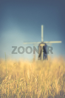Wheat Field Windmill