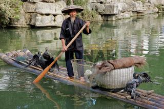 Chinese cormorant fisherman