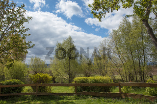 Garten mit Zaun und Hecke