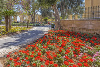Flower Beds, Upper Barrakka Garden, Valletta, Malta