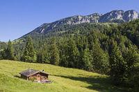 Obere Orterer Alm südlich der Benediktenwand