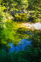 Bridge on a river. Abel Tasman National Park, New Zealand