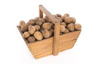 Wooden harvest basket walnuts