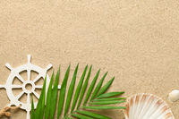 Summer Background with Green Palm Leaf, Decorative Ship Steering Wheel and Shells