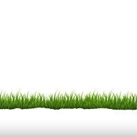 Green Grass And Ripped Paper Border Transparent Background